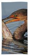 Cormorant With Large Fish Beach Towel