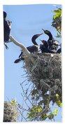 Cormorants Nesting Beach Towel