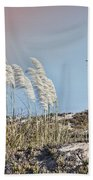 Coronado Island Pampas Grass Beach Towel