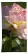 Cotton Candy Pink Peace Rose Beach Towel
