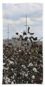 Cotton Ready For Harvest In Alabama Beach Towel