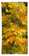 Country Color 10 Beach Towel