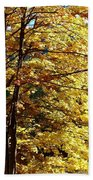 Country Color 22 Beach Towel