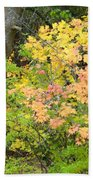 Country Color 23 Beach Towel