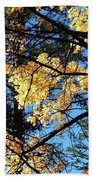 Country Color 25 Beach Towel