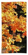 Country Color 26 Beach Towel