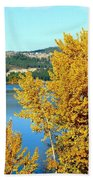 Country Color 5 Beach Towel