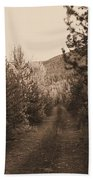 Country Road In Sepia  Beach Towel