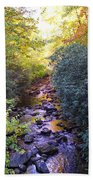 Courthouse River In The Fall 3 Beach Towel