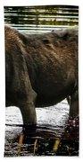 Cow Moose Beach Towel