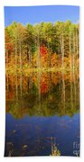 Coxsackie Reflection Beach Towel
