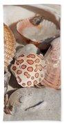 Crab Shell Beach Towel