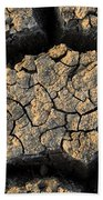 Cracked, Dried Out Mud, Mokolodi Nature Beach Towel