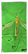 Crane Fly 7623 Beach Towel