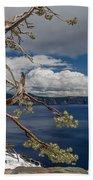 Crater Lake Pine Beach Towel