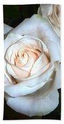 Creamy Roses IIi Beach Towel