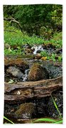 Creek End Beach Towel