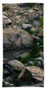 Creek Flow Panel 5 Beach Towel