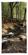 Creek In Woods, Cloughleagh, County Beach Towel