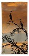 Crowned Cranes At Sunrise Beach Towel