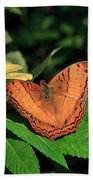 Cruiser Butterfly Beach Towel