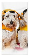 Cute Dogs In Halloween Costumes Beach Towel by Elena Elisseeva