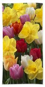 Daffodil Narcissus Sp Lucky Number Beach Towel