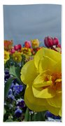Daffodil Up Front Beach Towel