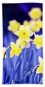 Daffodils Flowers Beach Towel