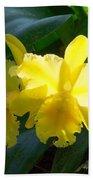 Daffodils In The Wild Beach Towel