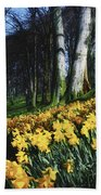 Daffodils Narcissus Flowers In A Forest Beach Towel