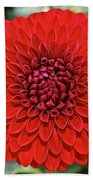 Dahlia 4001 Beach Towel