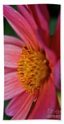Dahlia Candles Beach Towel