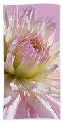 Dahlia Flower Pretty In Pink Beach Towel