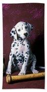 Dalmatian Puppy With Baseball Beach Towel