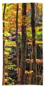 Dappled Sun On Fall Colors Beach Towel