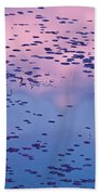 Dawn Sky Reflected In Pool Beach Towel