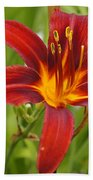 Day Lilly In Diffused Daylight Beach Towel