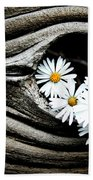 Dead Wood And Asters Beach Towel
