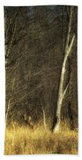 Deadwood Napanee Beach Towel