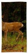 Deer Gazing  Beach Towel