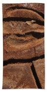 Deer Imprint In Mud Beach Towel