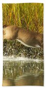 Deer Running Through The Salt Marsh Beach Towel
