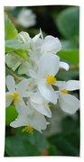 Delicate White Flower Beach Towel