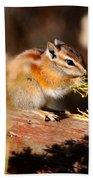 Desert Chipmunk Eating His Breakfast Beach Towel