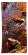 Details In Nature Beach Towel