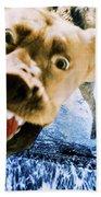 Devil Dog Beach Towel