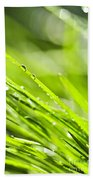 Dewy Green Grass  Beach Towel