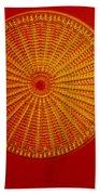 Diatom - Arachnoidiscus Ehrenbergi Beach Towel