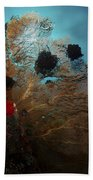 Diver And Sea Fan At Liberty Wreck Beach Towel